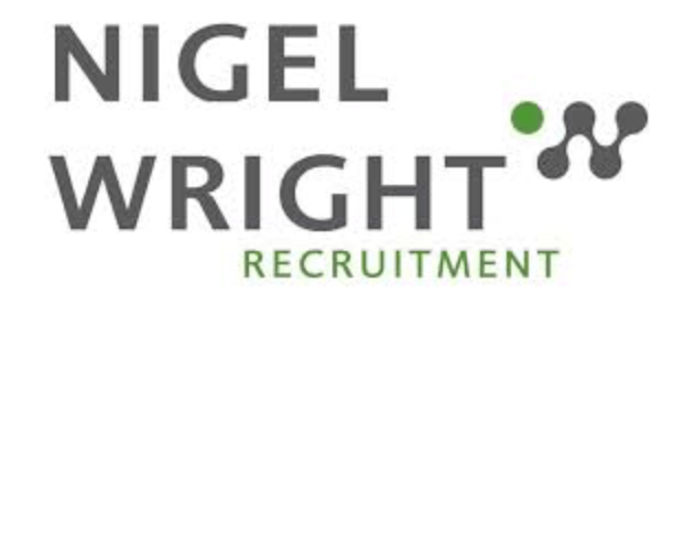 Nigel Wright recruitment logo - an office based business in Newcastle upon Tyne